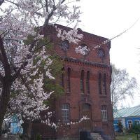 Russia. Kursk region. Korenevo., Коренево