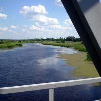 Вид с моста., Коренево