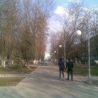 Аллея, на проспекте Комунистическом - г.Курчатов - (вид на восток), Курчатов