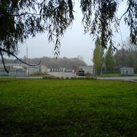 Дорога на платформу, Курчатов