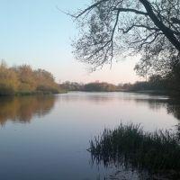 Река Сейм. (001), Льгов