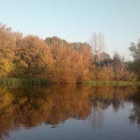 Река Сейм. (004), Льгов