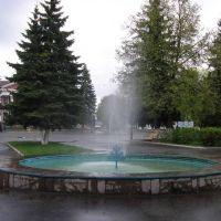 Красная площадь, Льгов
