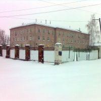 The central regional hospital, Пристень