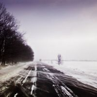 Dire February, Пристень