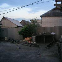 472. Во дворе у Николая Умеренко, Суджа