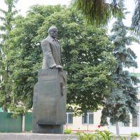 памятник Ленину В.И., Фатеж