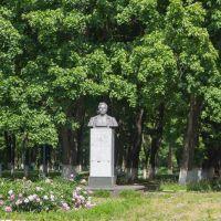 Памятник Артёму (Сергееву Федору Андреевичу), Фатеж