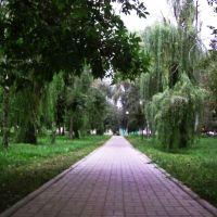 Парк, Черемисиново