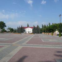 площадь у Администрации, Грязи