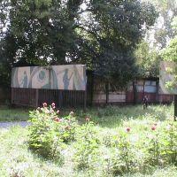 В верхнем парке 2, Данхов