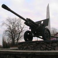 Пушка 3, Данхов