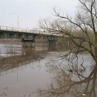 Мост в половодку 15.04.12, Данхов