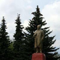 Ленин на главной площади, Долгоруково