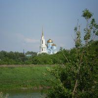 Вид на монастырь с другого берега, Задонск