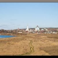 Задонский мужской монастырь, Задонск