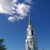 Задонский мужской монастырь, колокольня, Задонск