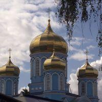 Золотые купола, Задонск