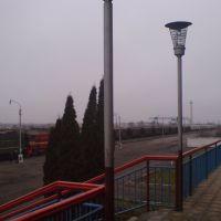 "Станция ""Лебедянь"" [Railroad stantion ""Lebedyan""], Лебедянь"