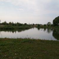 Левашевский пруд, Лев Толстой