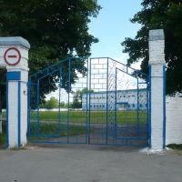 Стадион, Лев Толстой