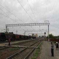 Станция Тербуны, Тербуны