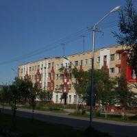 Советская ул., Ола