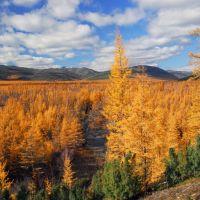 Kupka river, Омонск