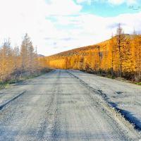Дорога в Магадан, окресности поселока Синегорье, Синегорье