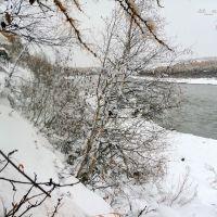 Река Колыма, поселок Синегорье, Синегорье