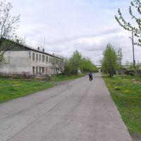 Ул. Победы. п.Эвенск, лето 2008 г. Фото В.Лахненко, Эвенск