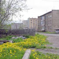 Дома на ул.М.Амамич. п.Эвенск, июнь 2008 г. Фото В.Лахненко, Эвенск