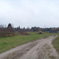 Дорога в лес, Дубовский