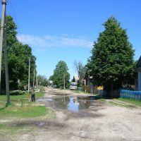 Деревня Паулкино, Дубовский