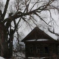 Старый дом, Дубовский
