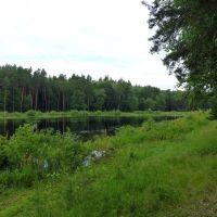 озеро у Звенигово, Звенигово