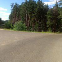 Дорога, Звенигово
