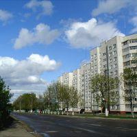 Самый большой дом ), Козьмодемьянск
