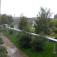 Школа №3, Козьмодемьянск