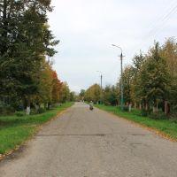 Улица Советская, Новый Торьял