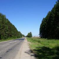 Дорога в Новый Торъял, Новый Торьял