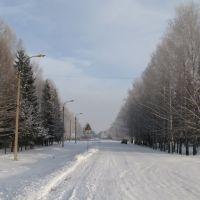 Оршанка зимой, Оршанка