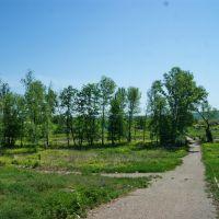 живописная аллея в большеберезниковском парке, Большие Березники