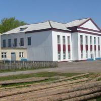 Большеигнатовская средняя школа, Большое Игнатово