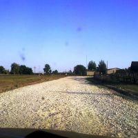 Дорога на деревню Выша, Выша