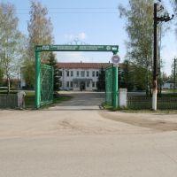 Районная Больница, Ельники