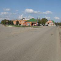 развилка: левее на Первомайск, Ельники