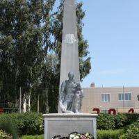 Памятник погибшим воинам, Ельники