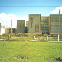 кадошкинская школа, Кадошкино