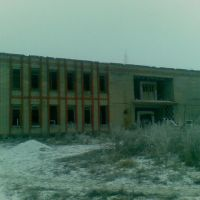 The Old building of management of collective farm, Кадошкино